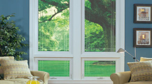 St. Louis Casement Windows